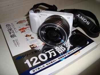 DSC05621 (640x480).jpg