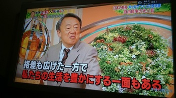 DSC_3047.JPG