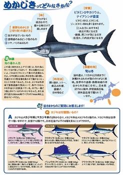 fish-body-img (451x640).jpg
