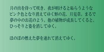 ikku1108_3.jpg